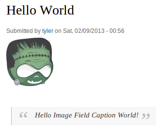 Image Field Caption Node View Example